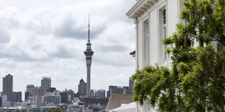 Treasury wants loan-to-income cap to cool Auckland's heated property market